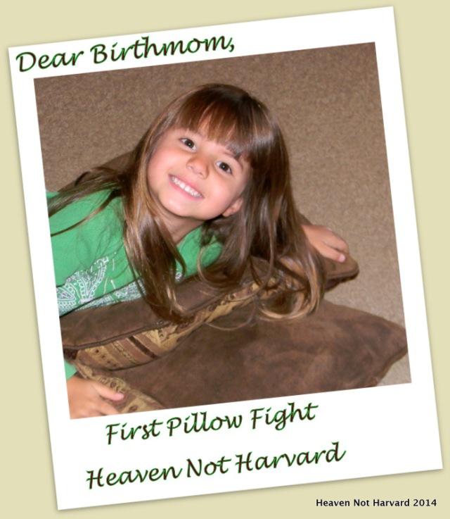 Dear Birthmom